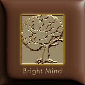 Bright Mind