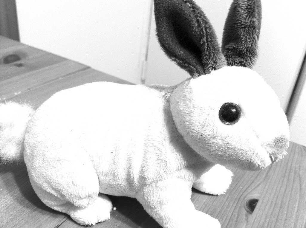 bunnyhero