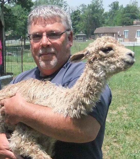 Rich Brandt - Suri Alpacas