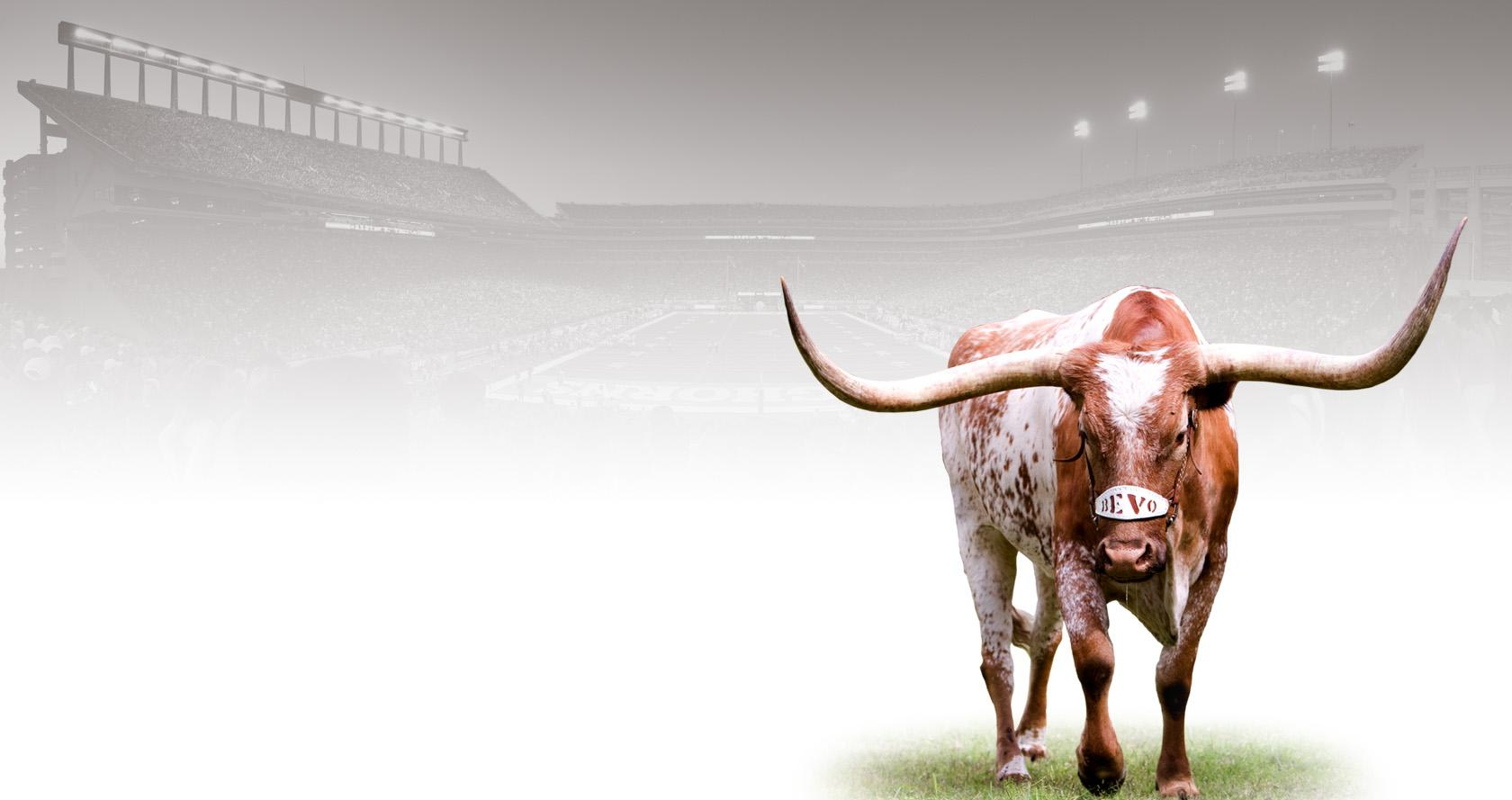 The Longhorn Foundation