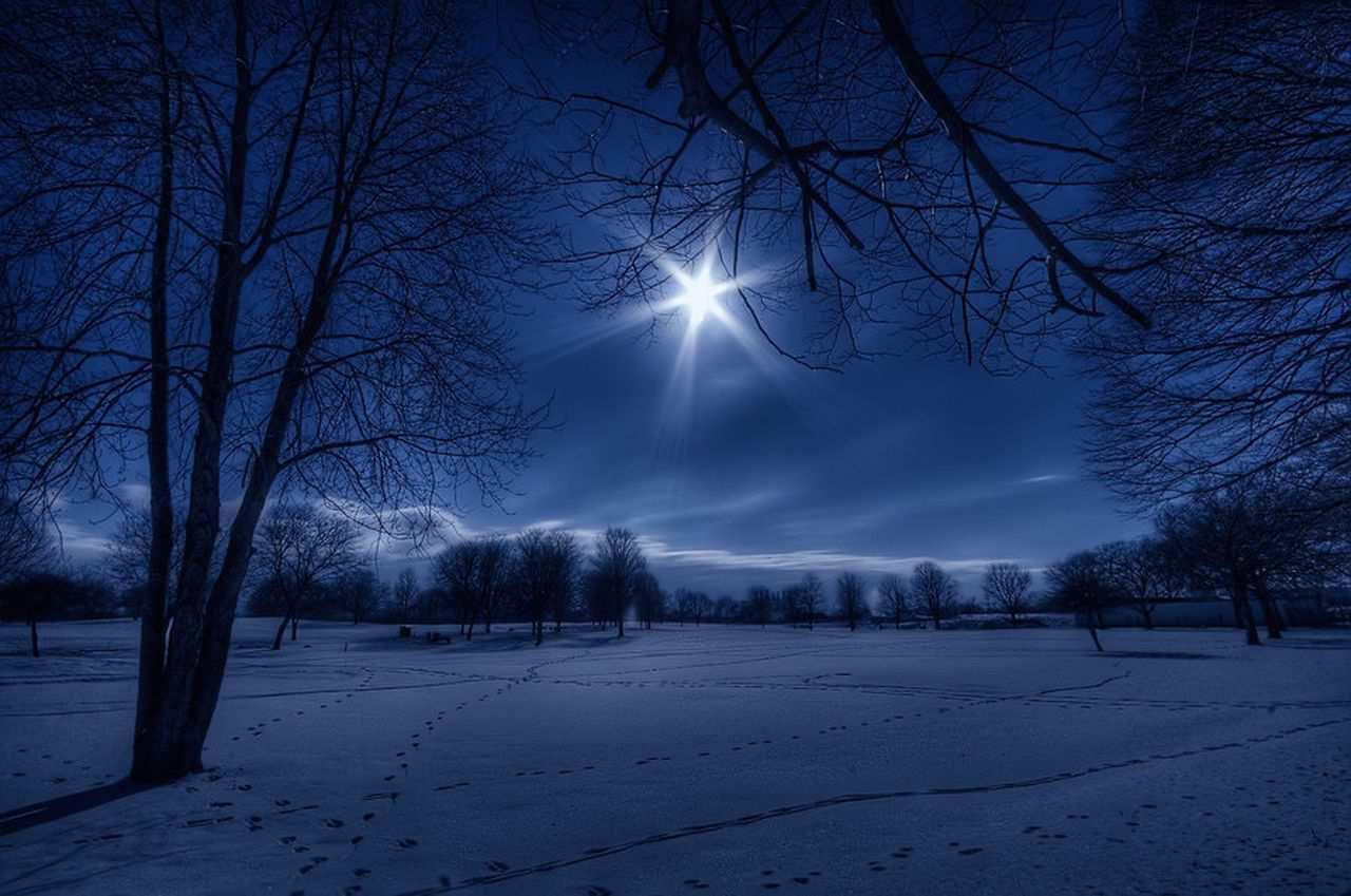 Januar Bima Sakti