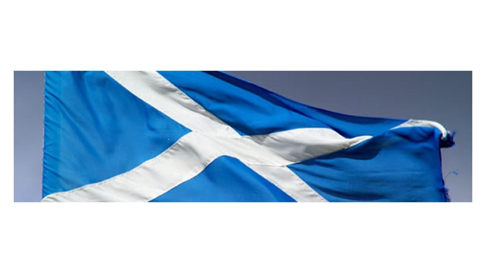 Scotsfox